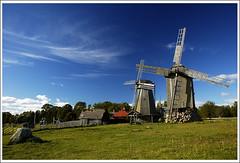 Saaremaa mills