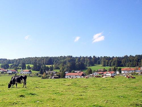 The Jura