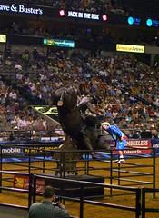 (.emily.) Tags: statue bronze audience clown crowd bull rodeo pbr bullriding admiring adrianomoraes flintrasmussen builtfordtoughseries