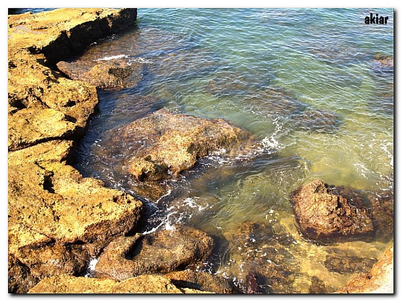 Roca y Mar.