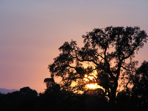 Sunset 090907