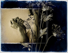 you remind me (Kelly Angard) Tags: life flowers portrait woman selfportrait art girl beautiful female self canon person photo hands flickr solitude artist remember photographer arms personal sensitive amor decay feminine feel creative peaceful here enigma adventure explore sp photograph journey fate experience destiny soul passion imagine reality warrior writer 365 create etsy now gratitude connection appreciate kreativekell individual within awaken epiphany enlighten kellya kellyangard kellyafineartphotography hourofthediamondlight theartoflight thecraftygirl kellyaetsycom