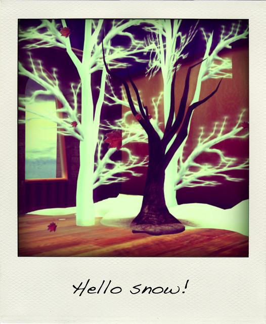 trees_001-pola