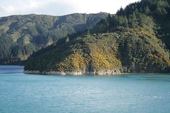 the Marlborough Sounds