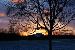 Sunrise in January - Arctic Norway (elysea100) Tags: sky sun norway sunrise colours january arctic tana finnmark anawesomeshot superbmasterpiece elysea