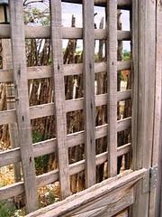 wooden window panes (ybonesy) Tags: newmexico corrales albuquerquewomensflickrmeet