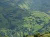 green mountain, melamchi river (jk10976) Tags: nepal mountain green gosaikunda jk10976 jkjk976