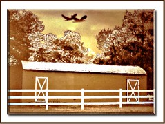 SEPIA FARMSTEAD (fantartsy JJ *2013 year of LOVE!*) Tags: camera fall nature beauty birds sepia photoshop canon seasons pastoral photoart sepiatone blueribbon naturelovers farmstead whatawonderfulworld beautyisintheeyeofthebeholder naturesque godsartwork mywinner happyautumn superbmasterpiece ithinkthisisart farmlandscape flickrdiamond sepiatonedphotographyaward flickrelite photostosmileabout trabajarconphotoshop perfectphotographer proudphotoshopper aclassphotos