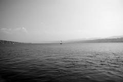 Barquito (David A Córdova M) Tags: sky bw texture water monochrome photography boat photo agua barco foto shot suiza picture bn cielo zürich fotografia amateur davidcordova deividcordova