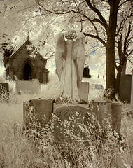 Stories in stone (IrenaS) Tags: overgrown cemetery statue angel montreal infrared cemeteryworkersstrike