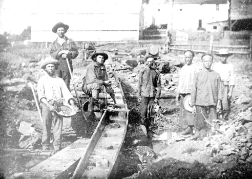 What did Chinese immigrants contribute to America?