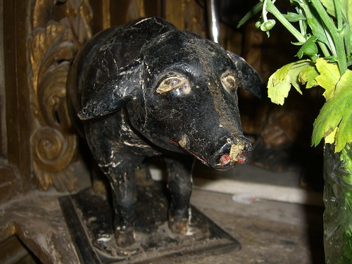 Sad Piglet