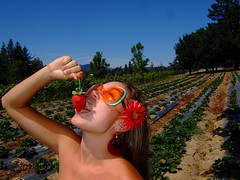 Tashina at the Strawberry Patch (brookelynn23) Tags: blue red woman color sexy beauty sunglasses fashion fruit contrast juicy strawberry leotard lucious tashina strawberrypatch generalhydroponics