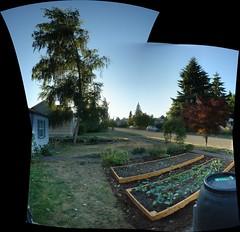 Garden Pano After.jpg