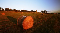 Evening Harvest, Croome (flash of light) Tags: park autumn light sunset summer england brown sunlight house english church field st parish court garden landscape geotagged evening hall mary harvest churches conservation national trust cylinder worcestershire hay bale redundant 2007 capability croome anawesomeshot dabitot gden geo:lat=52105807 geo:lon=2168958 magdelane