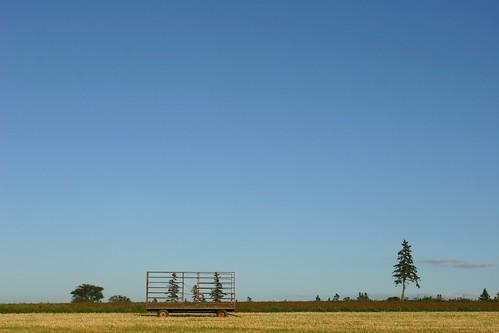Farmy Sights
