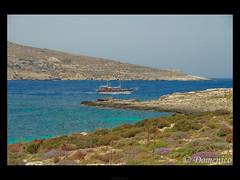 Comino, Sea and Sun... (DomenicoM82) Tags: blue blu malta lagoon laguna comino mywinners