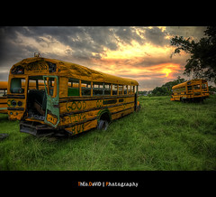 School Bus Field - Good Time Bus (Feo David) Tags: school sunset usa bus yellow yard america canon eos us louisiana texas unitedstates time crash good destruction 5d destroyed derby cimetiere ecole fiel ambiance etatsunis cimetry