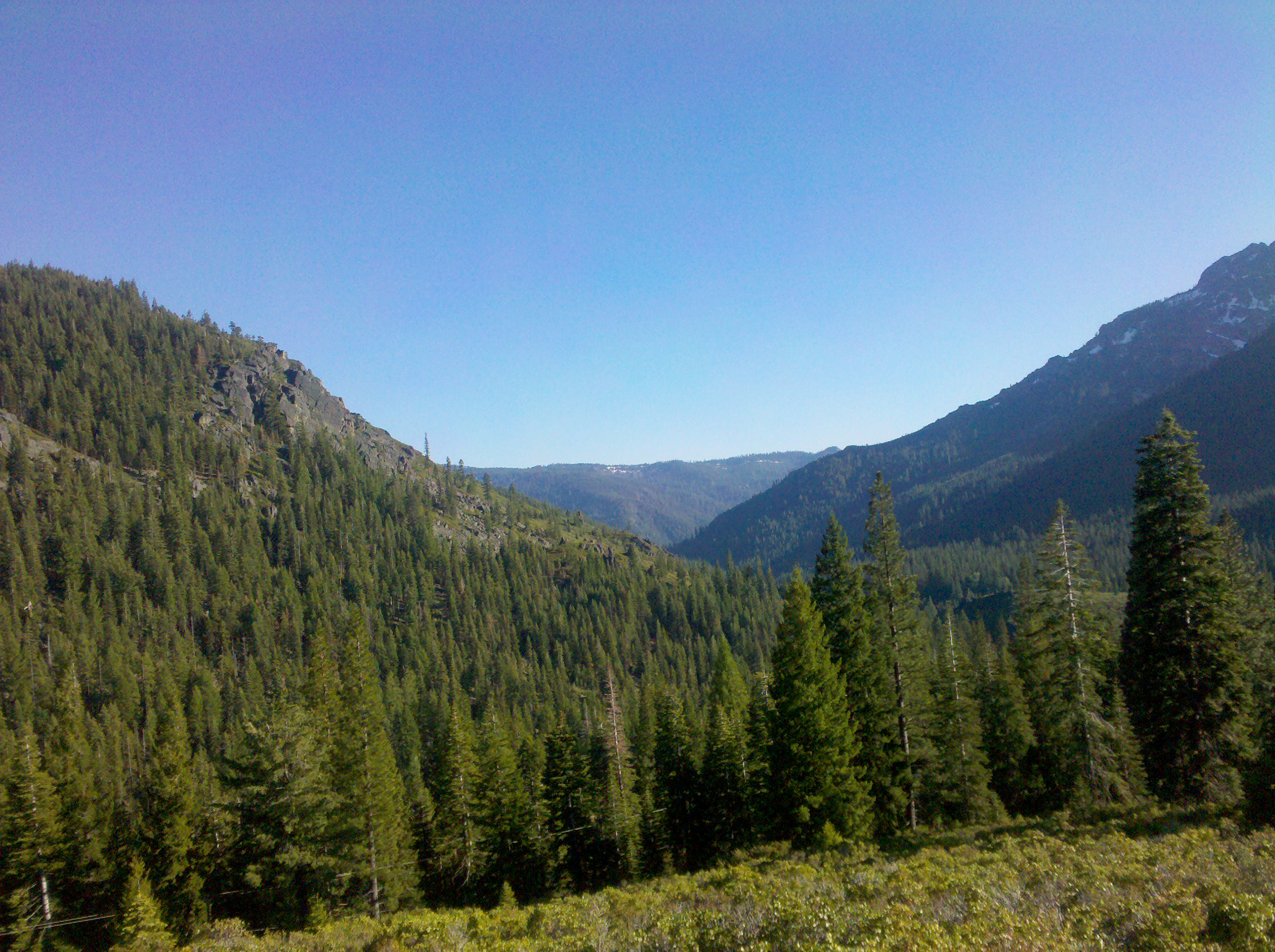 view west from the Gold Lake Highway, Tahoe National Forest
