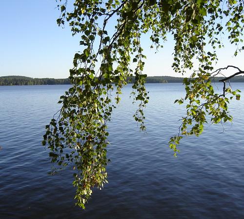 Avaran järven rannalla by Anna Amnell