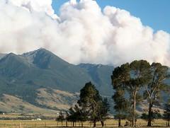 Montana on fire