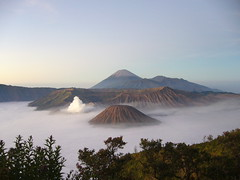 Mount Bromo (sungimann) Tags: mountain holiday nature trekking indonesia volcano asia hiking crater naturalwonder volcanic indonesian surabaya bromo semeru tengger treks mountbromo eastjava gunungbromo beautifullandscape abigfave cemorolawang gunungpenanjakan tenggercaldera awesomesight
