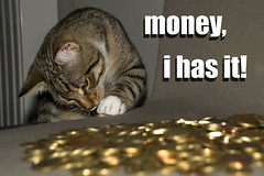 money, this cat has it