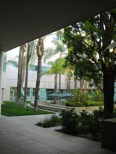 courtyard at work