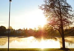 Wake up sun (Jetuma) Tags: morning sun reflection tree fall river rising karlstad klarälven soluppgång