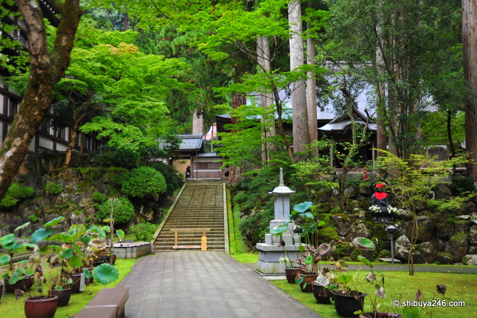 The temple is built on the hillside so there are stairs and gardens everywhere. It makes for a very nice setting
