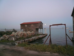P1450498 copy (antonas) Tags: sea thessaloniki kalochori chalastra