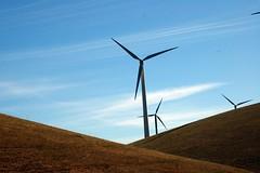 California's largest wind farm, Altamont pass