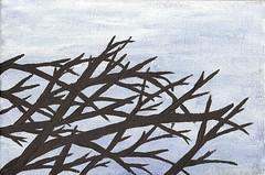 Tree & sky 1