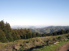 View of San Fran