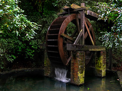 Enchanting Waterwheel (Peter Kurdulija) Tags: new tree water canon dark pond bush 2000 scenic reserve powershot zealand wellington lower waterwheel percy hutt enchanting a710 korokoro kurdulija