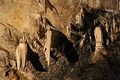 Stalattiti e Colonne (Roveclimb) Tags: mountain alps caves piemonte cuneo speleo grotte colonne frabosa bossea stalattiti stalagmiti