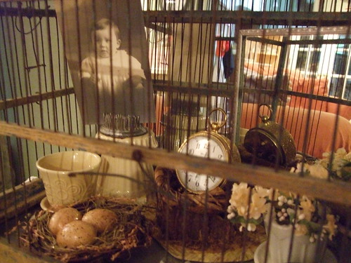 close up of birdcage decor