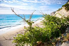You gotta love the sea... (sjoerdbooij) Tags: blue sea green beach strand bush nikon groen blauw waves greece nikkor zand struik griekenland golven