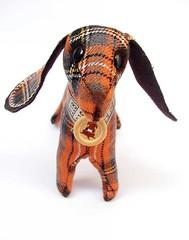 dachshund orange - muzzle