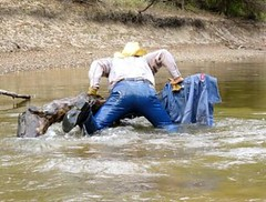 39 WS Mounting log without jacket on (Wrangswet) Tags: swimming canal wranglers cowboyhat riverhike swimmingfullyclothed wetjeans guysinwetjeans wetladz wetwranglers wetcowboy wetcowboys wetcowboyboots wetwranglerjeans meninwetjeans swimminginboots