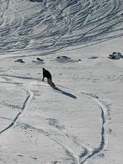 Me (Jamie Yeah!) Tags: snow snowboard ohau