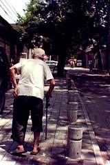 walking away. (theshanghaieye) Tags: china city vacation tree green bike bicycle cane walking asia tour slow walk capital chinese bikes tourist communist communism  lonelyplanet hutong  slowly backpacker houhai nationalgeographic treelined  middlekingdom travelbeijing