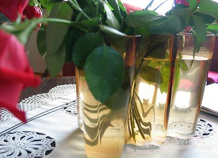 枝葉在花瓶的不同角度折射small copy