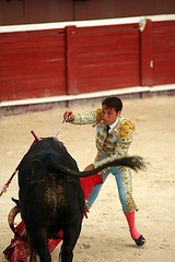 Estocada Toreador Bloody Bullfight Plaza de Toros and Folkloric Show Cancun Mexico trip 2007 2 118