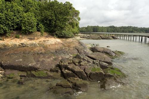 rocks by boardwalk