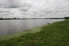 port meadow, flooded