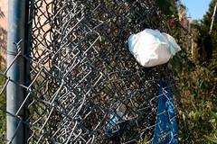 dirty diaper on fence (www.elliebrown.com) Tags: urban house abandoned philadelphia trash memorial decay fences pa burnt kensington