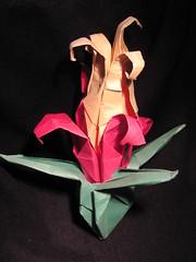 Tres origamis, una flora.