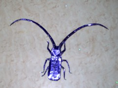Longhorn beetle (PhillipWest) Tags: origami paperfolding papiroflexia