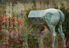 cavall de bronze - by desdibuix - miquel